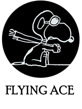 FLYING ACE×Steiff